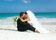 Организация и проведение Вашей свадьбы!