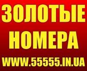Купить Красивые Золотые номера МТС 050,  066,  095. 099 Украина