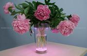 69153/60/PH Philips lumiware декоративная ваза