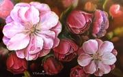 Картина маслом Цветы миндаля