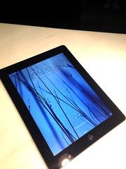 Apple iPad 2 32 Gb Wi-Fi+3G  black б/у