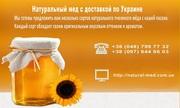 Натуральный мед 2015 года с доставкой по Украине