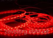 Светодиодная (LED) лента 60SMD(5050)12V 5м. Красный цвет