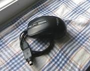 Мышка (euroline easy to use) USB проводная + переходник usb/ps2.