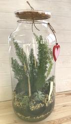 Флорариум maxi Аспарагус - подарок любимой