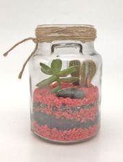 Флорариум mini,  красный